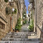 Steps in Dubrovnik by Thea 65