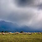 Sheep-storm Brewing by SeeOneSoul