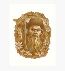 Radagast the Brown Art Print