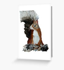 Red Squirrel Woodland Animal Acrylic Painting White Edit Greeting Card