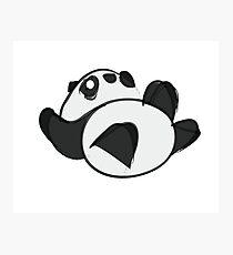 Tumbling Panda Bear Photographic Print