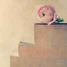 Bookworm by Nicola  Pearson