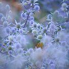 Blue Infinity by JennyRainbow