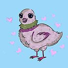 Pidgeon Lover  by M Bogdanis