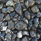 Beach Stones by Eric Glaser