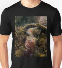 A Seaweed Blenny Fight Unisex T-Shirt