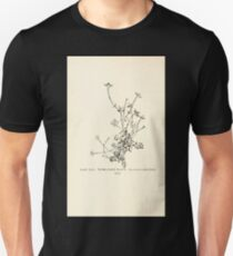 Southern wild flowers and trees together with shrubs vines Alice Lounsberry 1901 156 Thyme Leaved Bluets T-Shirt