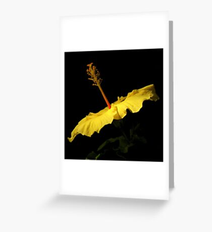 Black With A Hint Of Botanical Element ~ Part Two Greeting Card