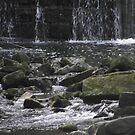 mini waterfalls by Michelle Cross