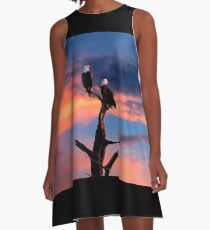 BALD EAGLE SUNSET A-Line Dress