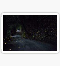 Firefly Road Sticker