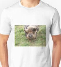 Pot-bellied pig. T-Shirt
