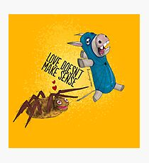 Donkey Spider And The Spider Photographic Print