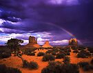 Rainbow over Monument Valley by Daniel H Chui