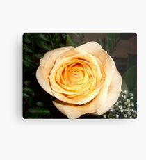 Only a Rose, Vancouver, BC Metal Print