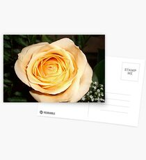 Only a Rose, Vancouver, BC Postcards