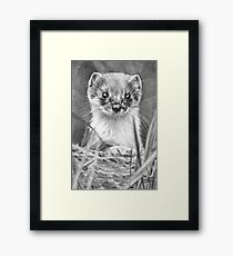 The Lookout Post Framed Print