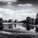 Peaceful Place in Milbridge, Maine by kenmo