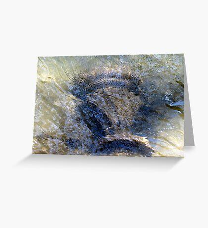 Cartoogechaye Creek Relic Greeting Card