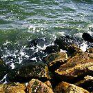 Rocky Beach by beefgnawpolis