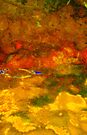 Water Abstract 13 - Creek Water by Deborah Crew-Johnson
