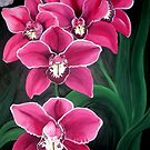 Pink Orchids by Sandy Sparks