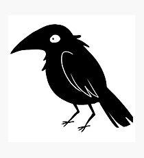 Little Crow Photographic Print