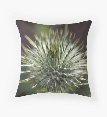 Round Green Thistle Bud Throw Pillow