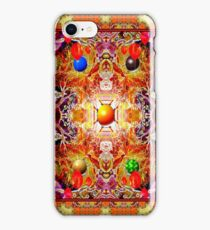 ***SEASONS WRAPPED IN A WHIRL AND TURNED INSUIDE OUT*** iPhone Case/Skin