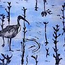 Ibis, Westernport by Frances Henke