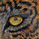 """Eye of the Leopard"" - oil painting by Avril Brand"