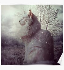 Frosted Poster
