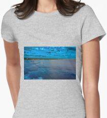 Farewell Cozumel Womens Fitted T-Shirt