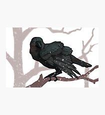 The Three Eyed Crow Photographic Print