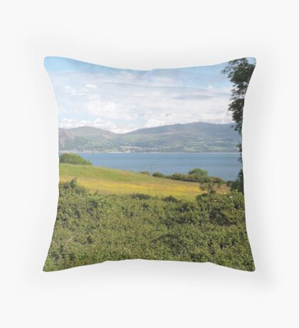 Reward In Every Goodness Throw Pillow