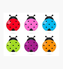 Stylized lady-bugs collection. Vector arts. Photographic Print
