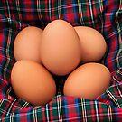 Scotch Eggs :) by Susie Peek
