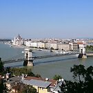Budapest - Danube, Parliament and Bridges by mikequigley