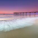 Pretty in Pink - Hervey Bay Qld Australia by Beth  Wode