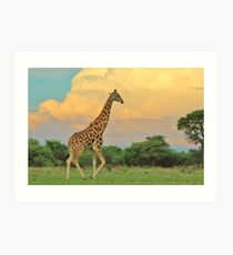 Giraffe - African Wildlife - The Rain is Coming Art Print