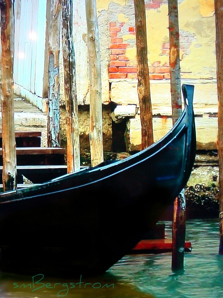 The Water Taxi by Susan McKenzie Bergstrom