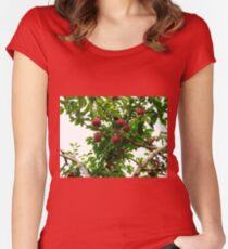 Yours for the Pickin' Women's Fitted Scoop T-Shirt