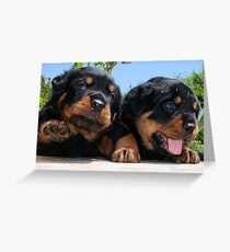 Two Rottweiler Puppies, High Five Greeting Card