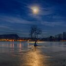 Wanaka Tree under the Moonlight by Linda Cutche