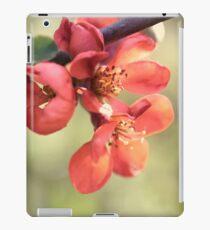 Chaenomeles japonica iPad Case/Skin