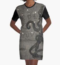 Stranger Graphic T-Shirt Dress