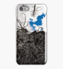 Burnt Trunk iPhone Case/Skin