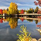 Mirror Pond Fall Spectacle by Marita Sutherlin