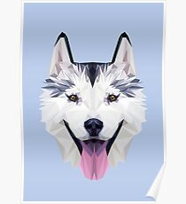 Husky low poly Poster
