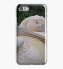 All for one and one for all! even if only two of us iPhone Case/Skin